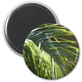 Palm tree Fronds 2 Inch Round Magnet