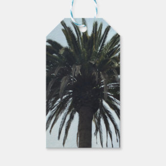 Palm Tree Gift Tags