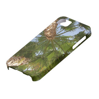 Palm Tree iPhone5 Case