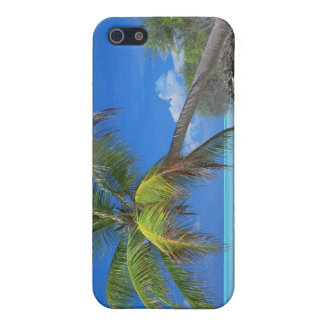 Palm Tree iPhone 5/5S Cases