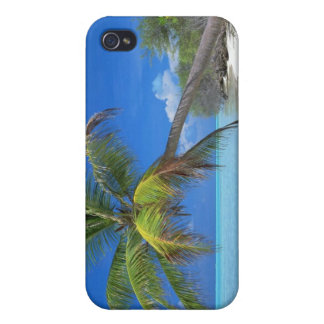 Palm Tree Cover For iPhone 4