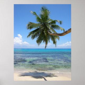 Palm Tree Island Poster