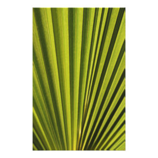 Palm Tree Leaf Stationery