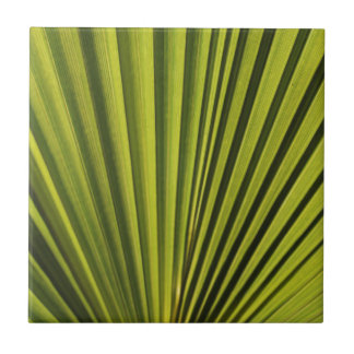 Palm Tree Leaf Tile