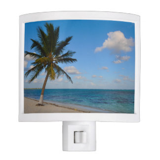 Palm Tree on a Beach Nite Lite