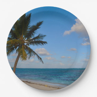 Palm Tree on a Beach Paper Plate