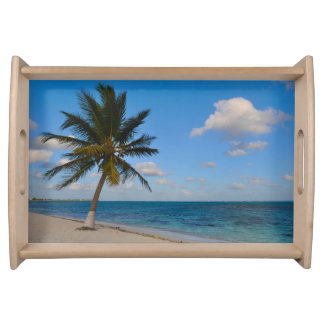 Palm Tree on a Beach Serving Tray