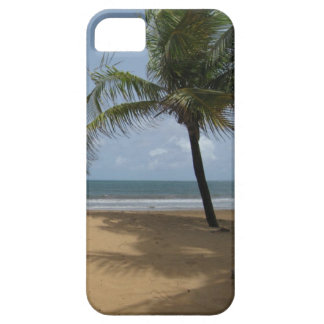 Palm Tree on the Beach Photo iPhone 5 Covers
