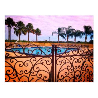 Palm Tree Paradise Postcard