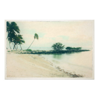 Palm Tree Peninsula at Smathers Beach, Key West FL Photo Print