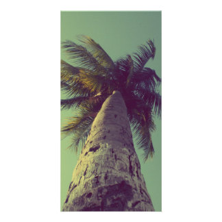 Palm Tree Photo Greeting Card