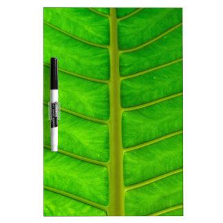 Palm Tree Print Dry Erase Board
