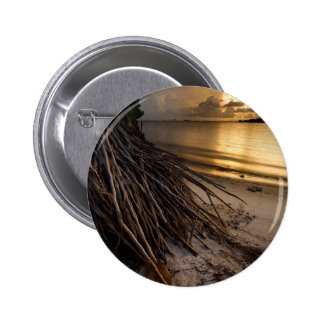 Palm Tree Roots at Sunset 2 Inch Round Button