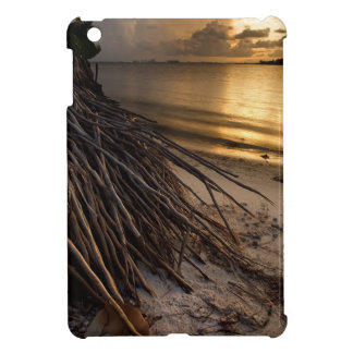 Palm Tree Roots at Sunset Cover For The iPad Mini