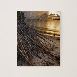 Palm Tree Roots at Sunset Jigsaw Puzzle