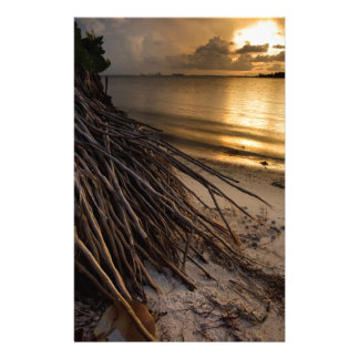 Palm Tree Roots at Sunset Personalized Stationery