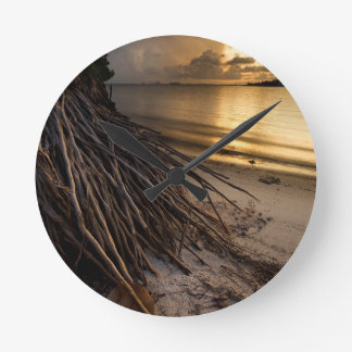 Palm Tree Roots at Sunset Round Clock