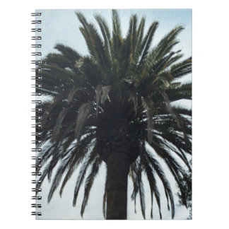 Palm Tree Spiral Notebook