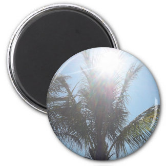 Palm Tree Summer Day Magnet
