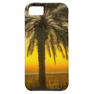 Palm Tree Sunrise Case For The iPhone 5