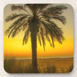 Palm Tree Sunrise Coaster