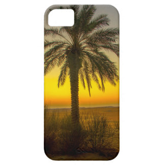 Palm Tree Sunrise iPhone 5 Covers