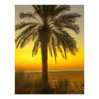 Palm Tree Sunrise Letterhead