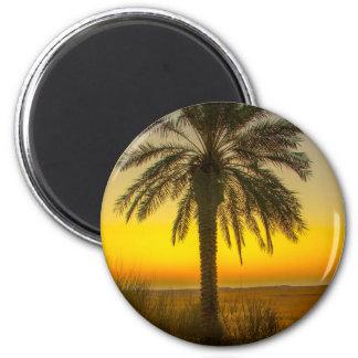 Palm Tree Sunrise Magnet