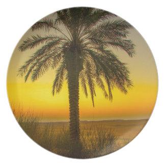 Palm Tree Sunrise Plate