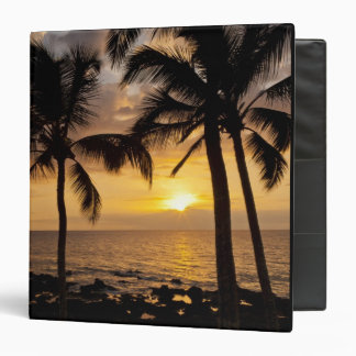 Palm tree sunset binder