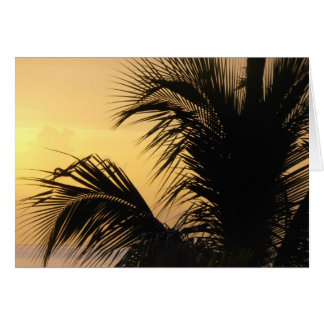Palm Tree Sunset card