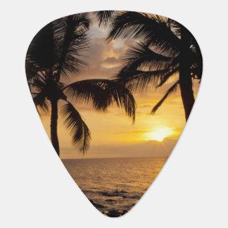 Palm tree sunset guitar pick