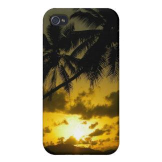 Palm tree sunset iphone case