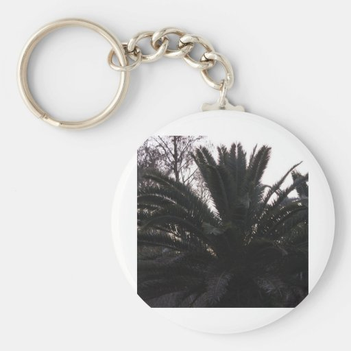 Palm Tree Sunset Key Chain