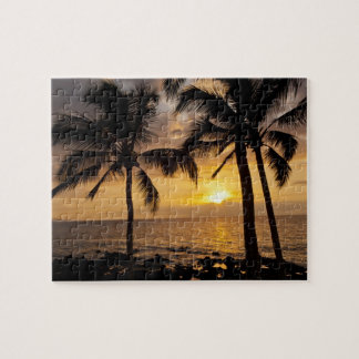 Palm tree sunset puzzle