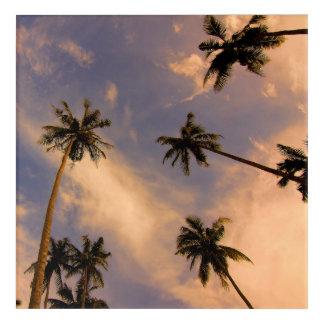 Palm tree tropical exotic paradise acrylic print