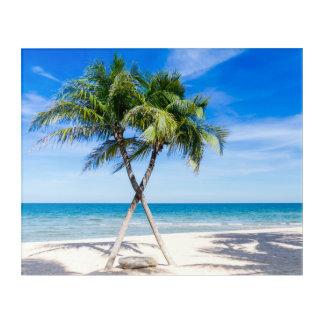 Palm tree tropical summer beach acrylic print