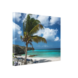 Palm Tree with Blue Sky and Turquoise Water Canvas