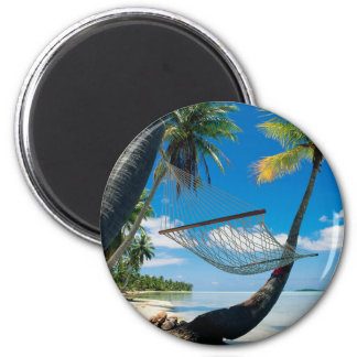 Palm Trees and Hammock Magnet