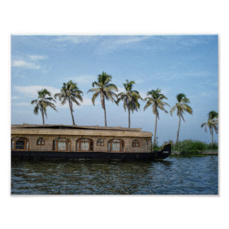 Palm trees and houseboat in color poster