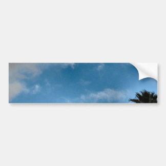 palm trees and sky bumper sticker