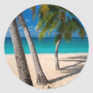 Palm trees and turquoise water along Seven-Mile Classic Round Sticker