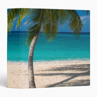 Palm trees and turquoise water along Seven-Mile Vinyl Binders