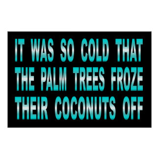 Palm Trees Froze Their Coconuts Off Sign