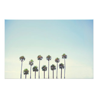 Palm Trees in California Photo Print