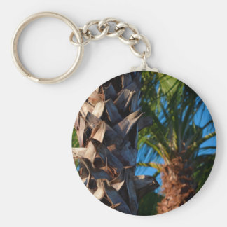 palm trees in florida key chains