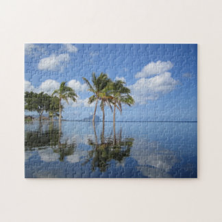 Palm trees on Mauritius. Jigsaw Puzzle
