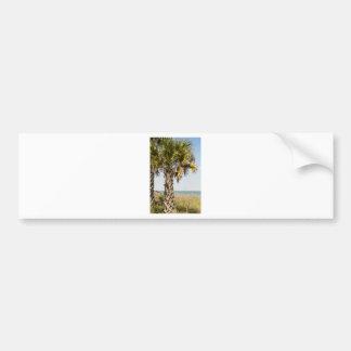 Palm Trees on Myrtle Beach East Coast Boardwalk Bumper Sticker