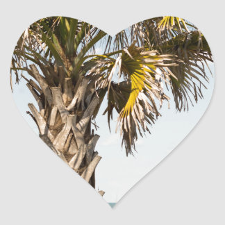 Palm Trees on Myrtle Beach East Coast Boardwalk Heart Sticker