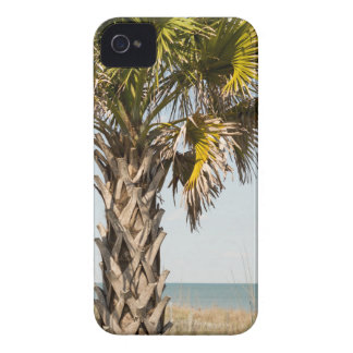 Palm Trees on Myrtle Beach East Coast Boardwalk iPhone 4 Covers